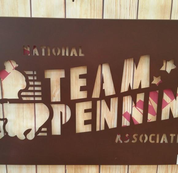 Insegna  Team Penning